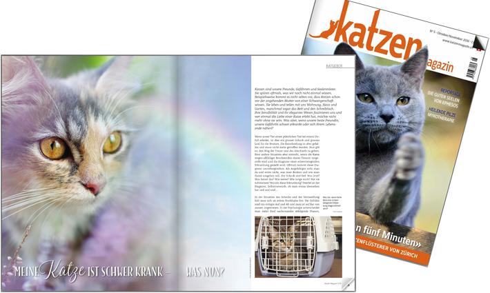vet-homoeopathie-cayra-arcangioli-katzen-magazin-_nr5_161003