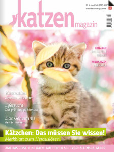 vet-homoeopathie-cayra-arcangioli-katzen-magazin-_nr3_170524