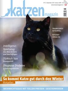 vet-homoeopathie-cayra-arcangioli-katzen-magazin-_nr6_241117