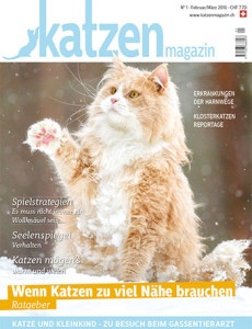 vet-homoeopathie-cayra-arcangioli-katzen-magazin-_nr1_230218