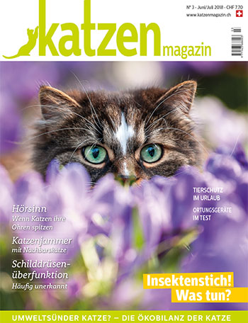 Artikel im Schweizer Katzen Magazin, 25.05.2018: «Nux vomica & Arsenicum – Magen-Darm-Erkrankungen homöopathisch behandeln»