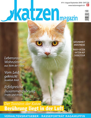 vet-homoeopathie-cayra-arcangioli-katzen-magazin-_nr3_250518